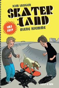 skaterland – Alene hjemme